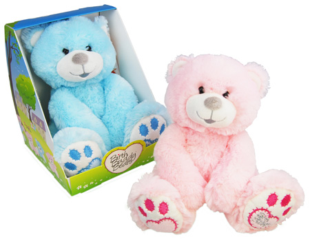 Birth Buddy Teddy Bears