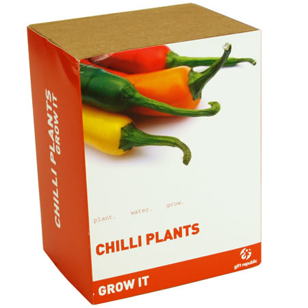 how to grow chilli plant at home