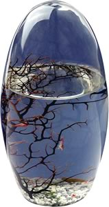Small Ecosphere Oval